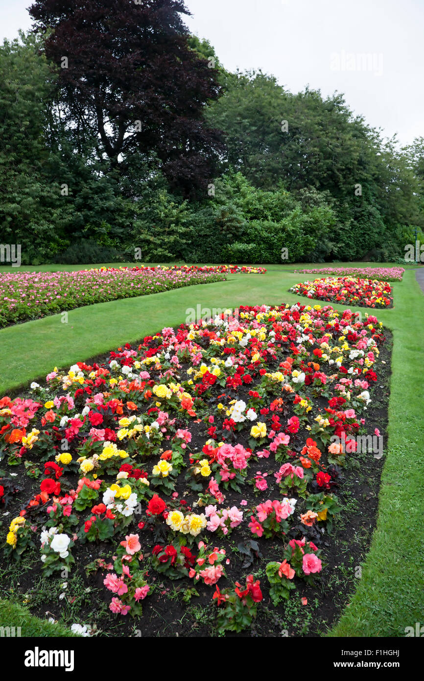 Beds full of late summer flowers on display in Haworth Central Park West Yorkshire flowers in bloom park - Stock Image