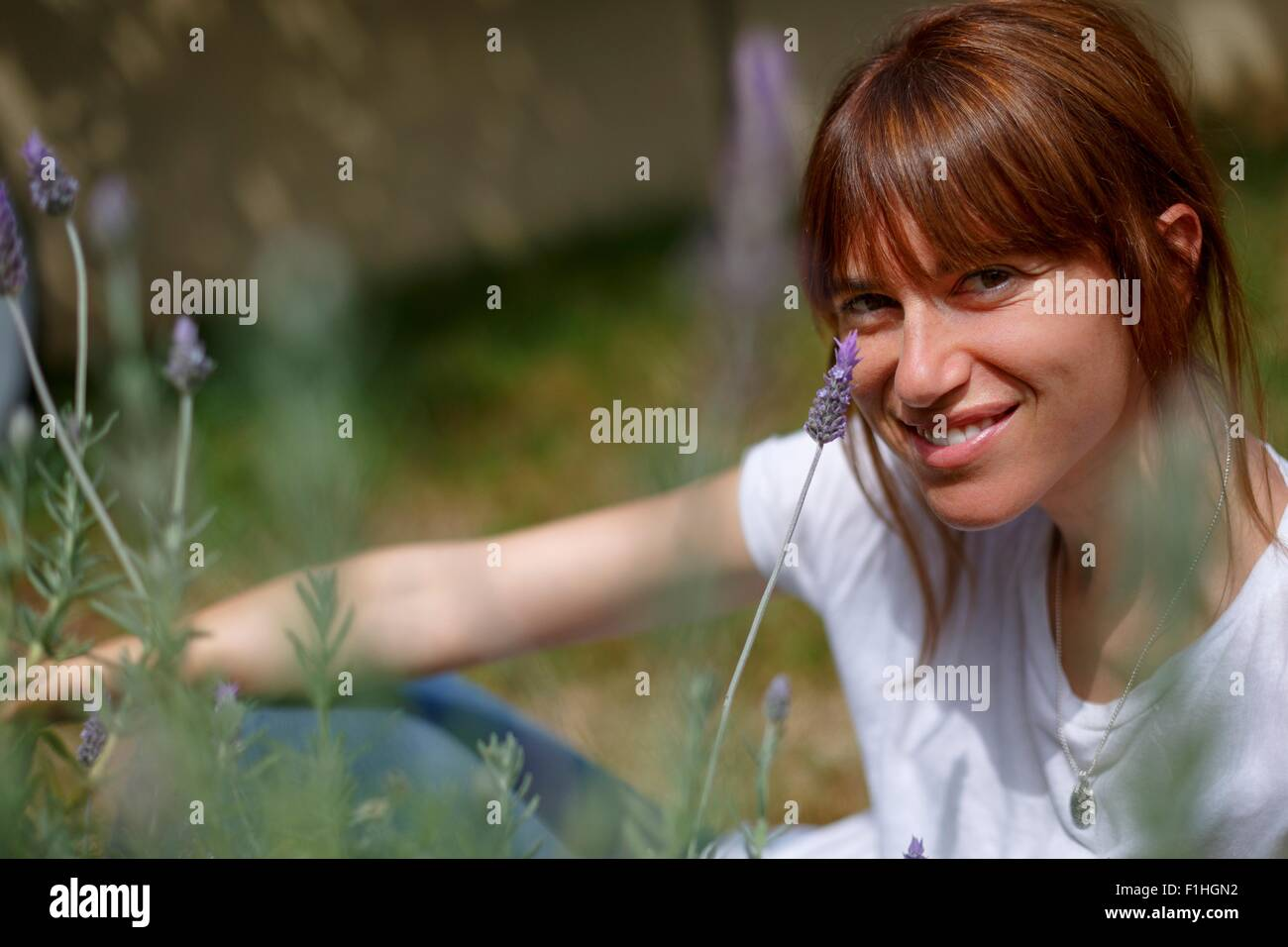 Mid adult woman sitting among lavender, looking at camera, smiling - Stock Image