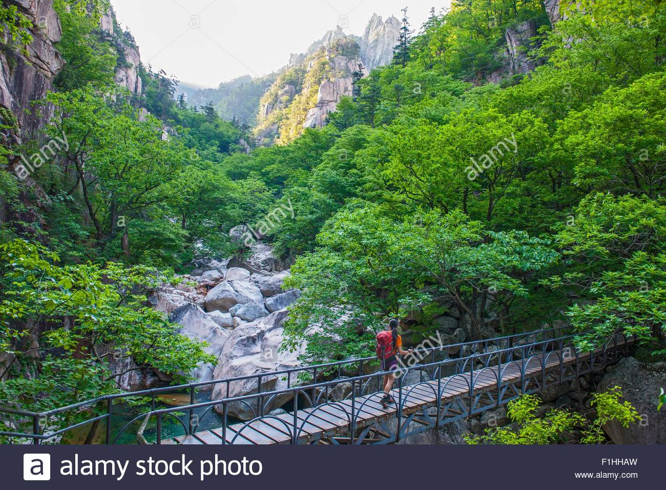 Female hiker crossing footbridge on way to Daecheongbong peak,  Seoraksan National Park in South Korea - Stock Image