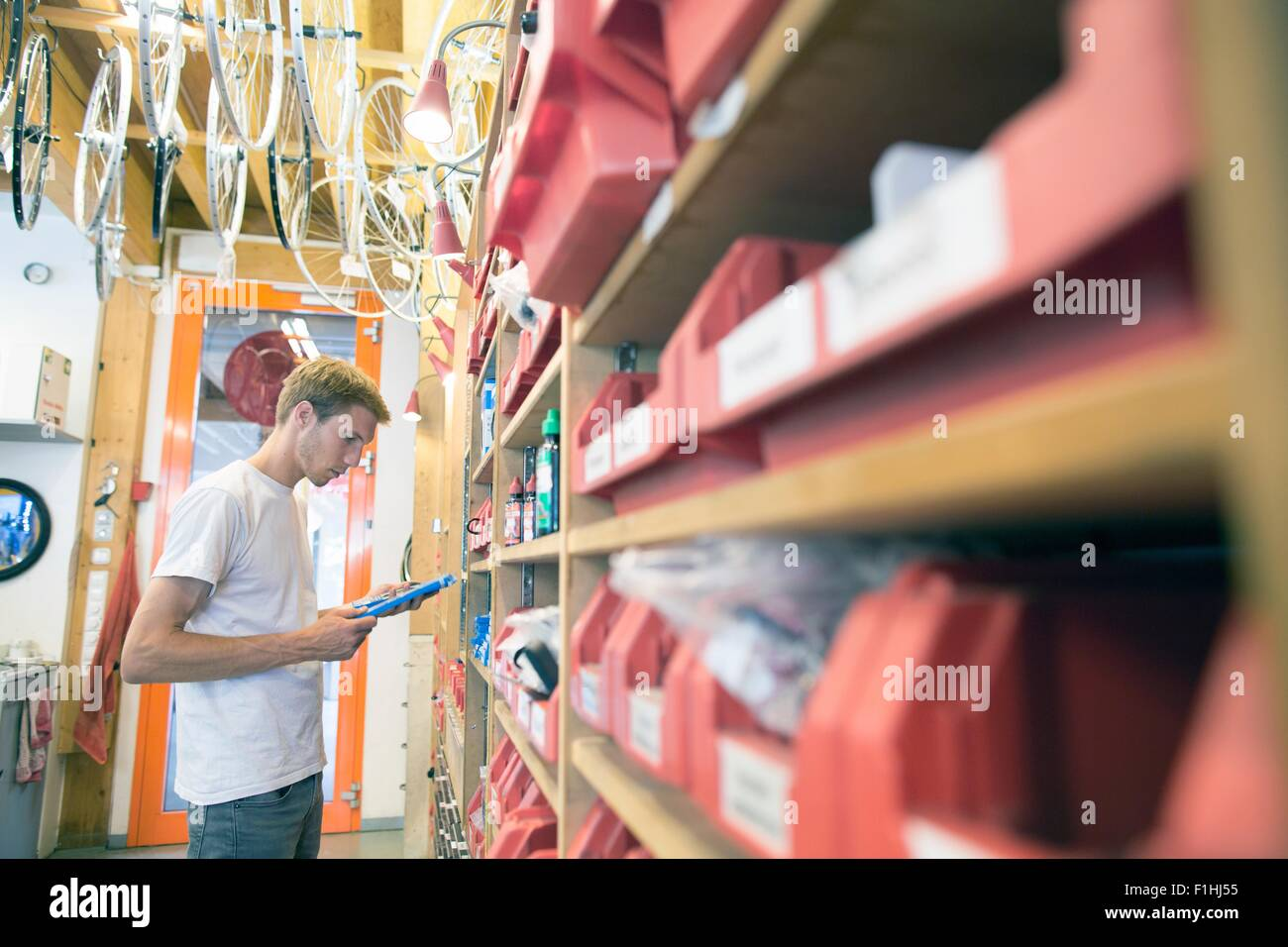 Mid adult man in storage room choosing bicycle part - Stock Image