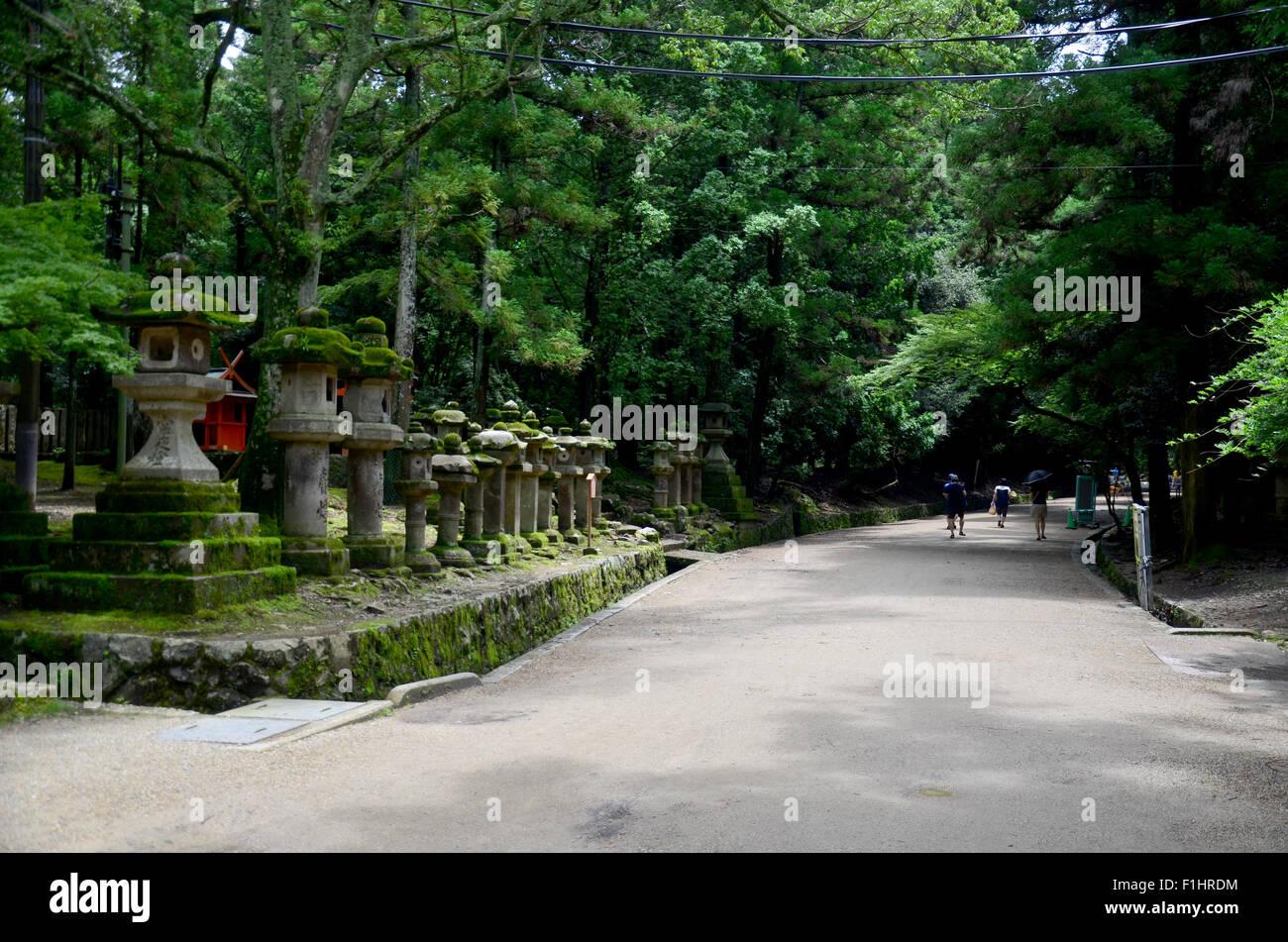 Traveler walking on pathway go to Kasuga Shrine on July 9, 2015 in Nara, Japan - Stock Image