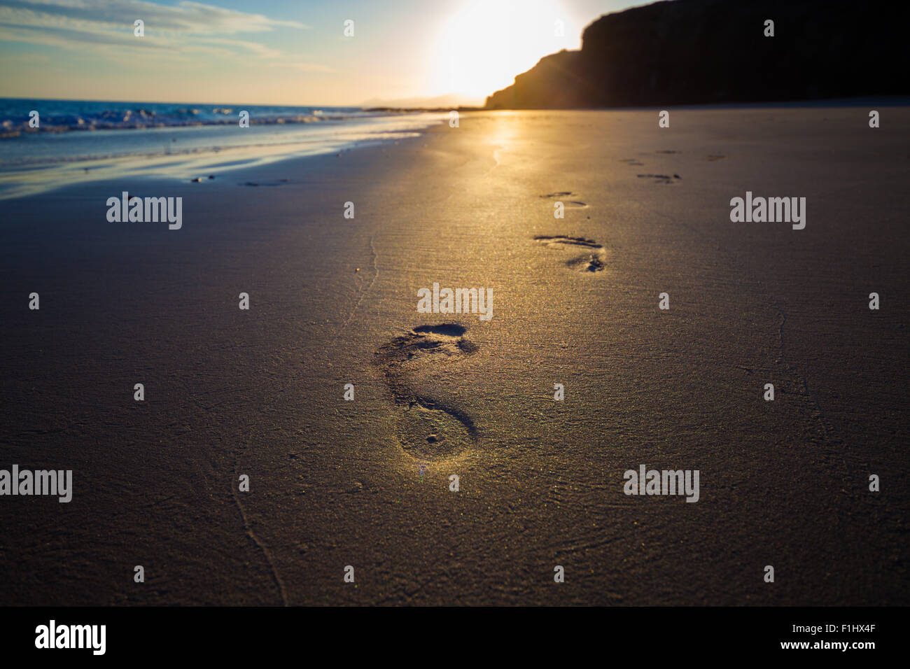 footprints Homo sapiens , people  in the sand - Stock Image
