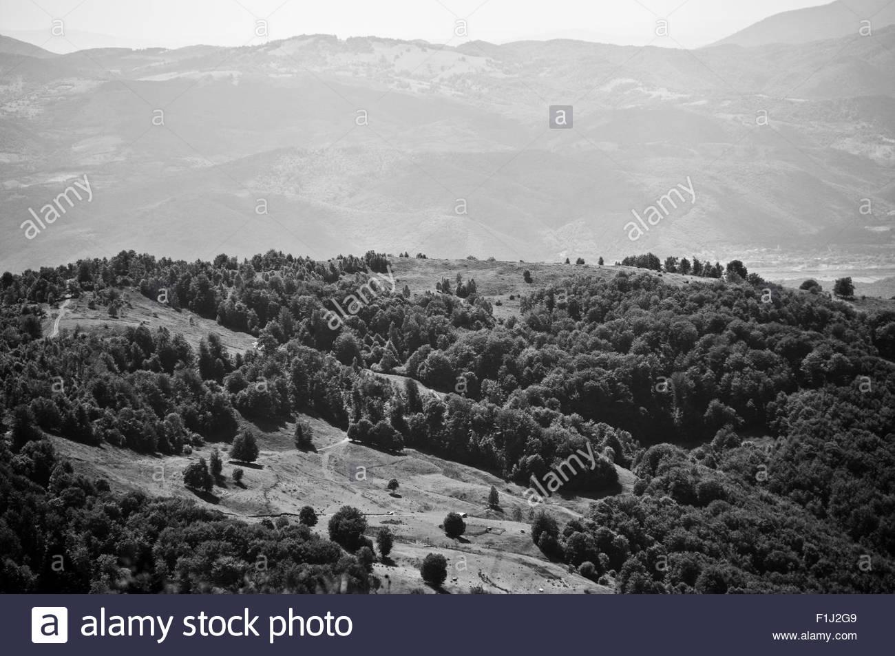 A small glade on Biharia mountain. - Stock Image