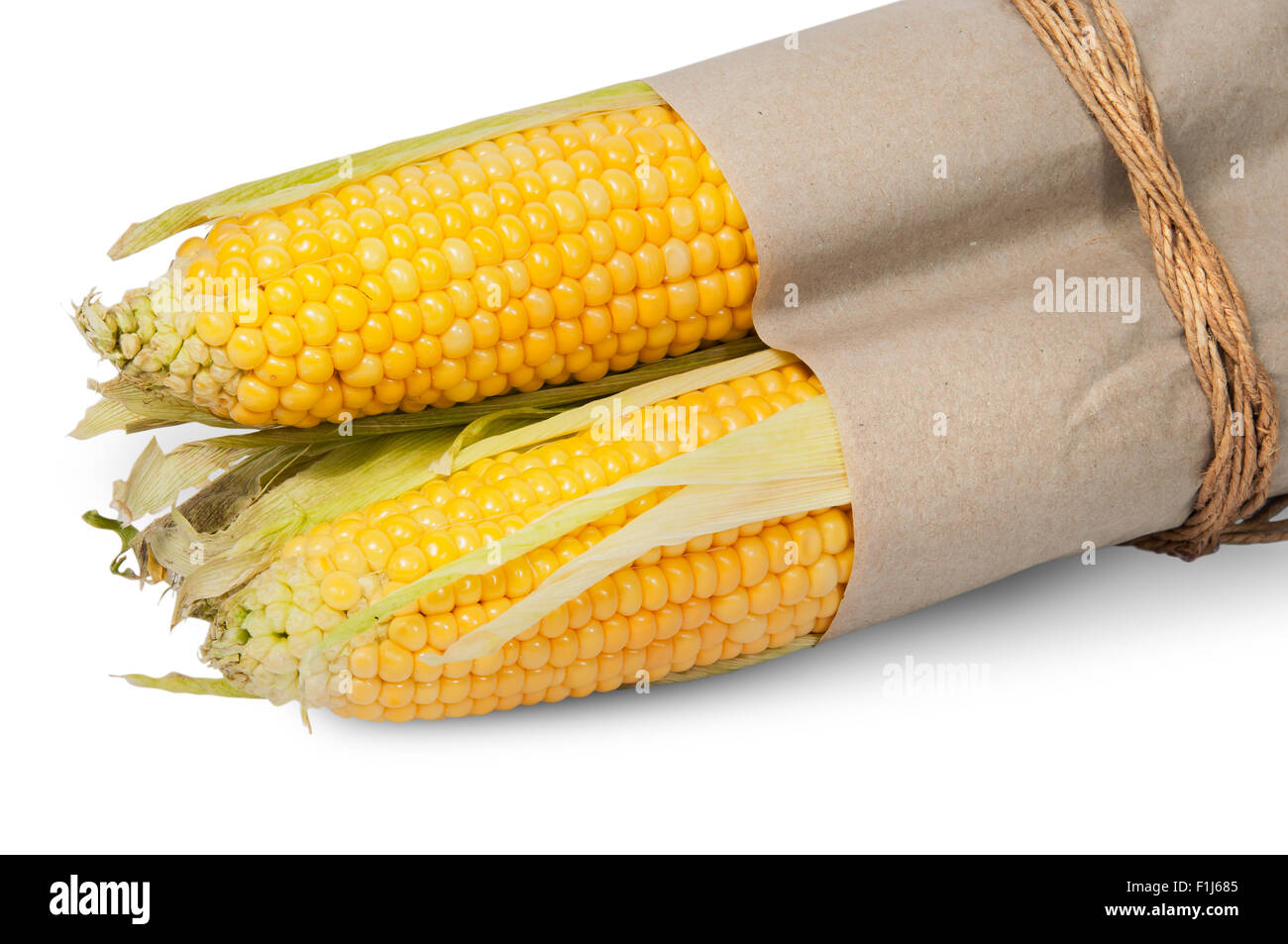 Several corn cob in paper bag tied with rope isolated on white background Stock Photo