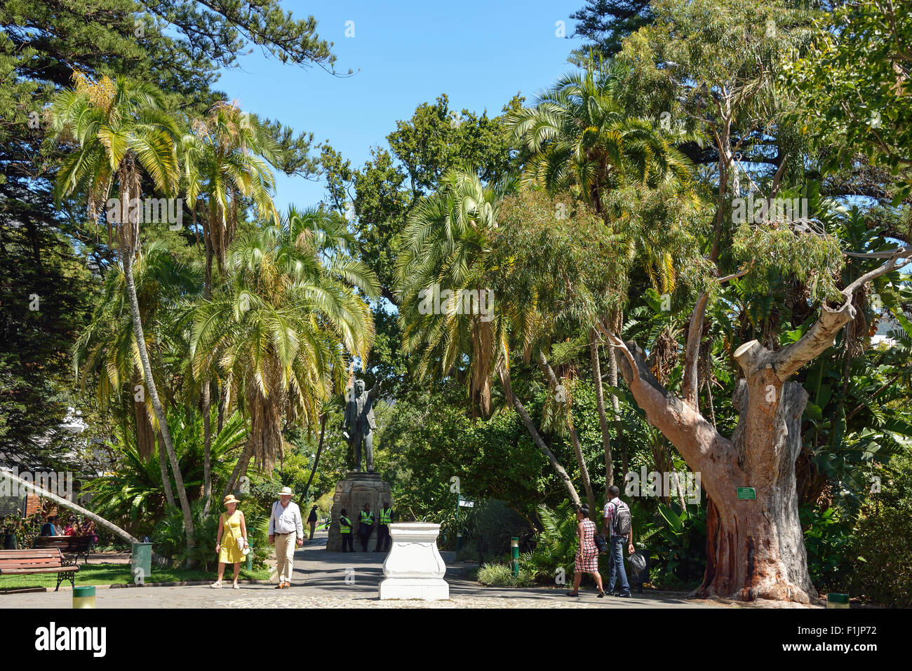 The Public Garden, The Company's Garden area, Cape Town, Western Cape Province, Republic of South Africa - Stock Image