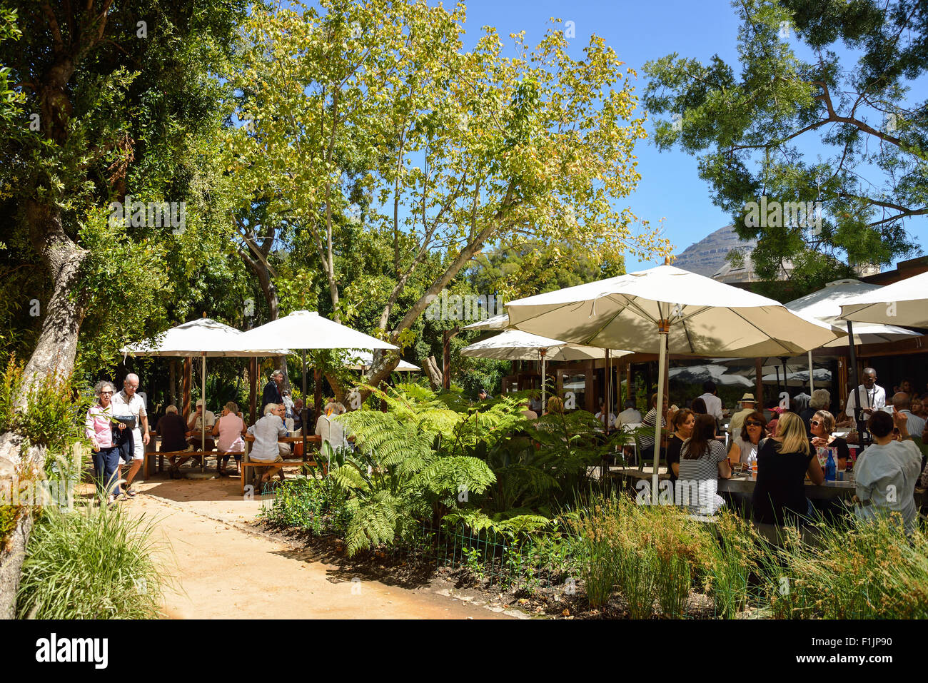 The Restaurant in The Public Garden, Cape Town, Western Cape Province, Republic of South Africa - Stock Image