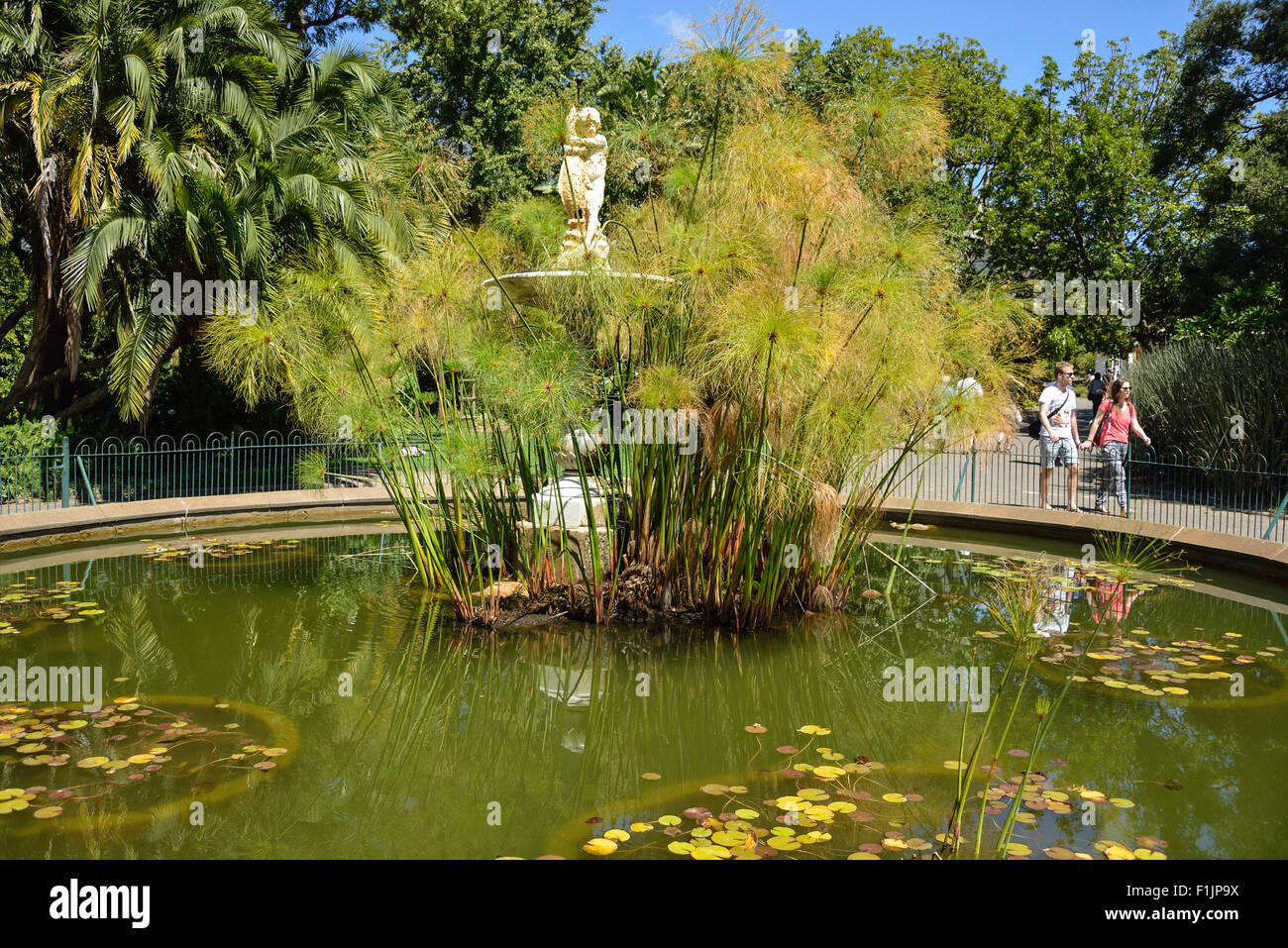 Thorne Fountain in The Public Garden, The Company's Garden, Cape Town, Western Cape Province, Republic of South - Stock Image