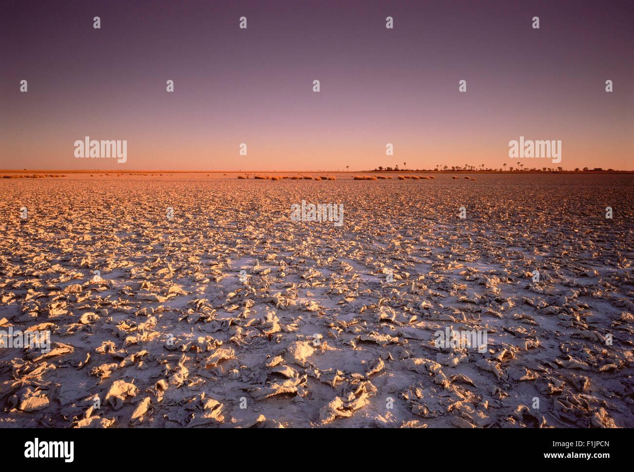 Sunset over Makgadikgadi Pans Botswana, Africa, South Africa - Stock Image