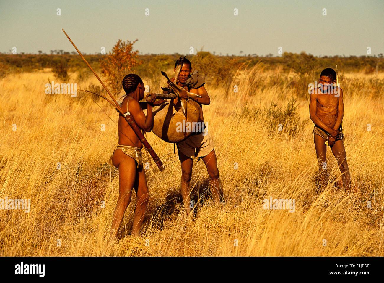 Bushmen Carrying Their Kill Botswana, Africa - Stock Image