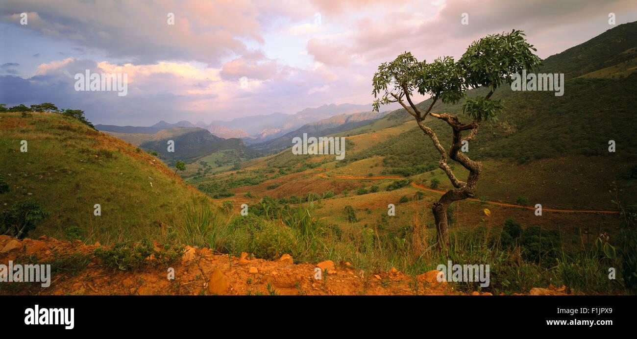Landscape, Tanzania, Africa - Stock Image