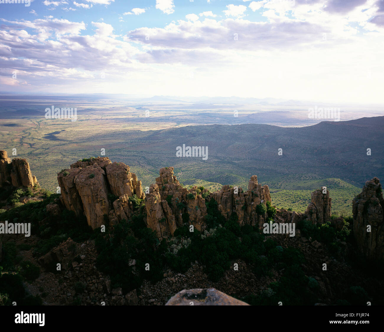 Petrified Trees Valley of Desolation Graaff Reinet, Eastern Cape, South Africa - Stock Image