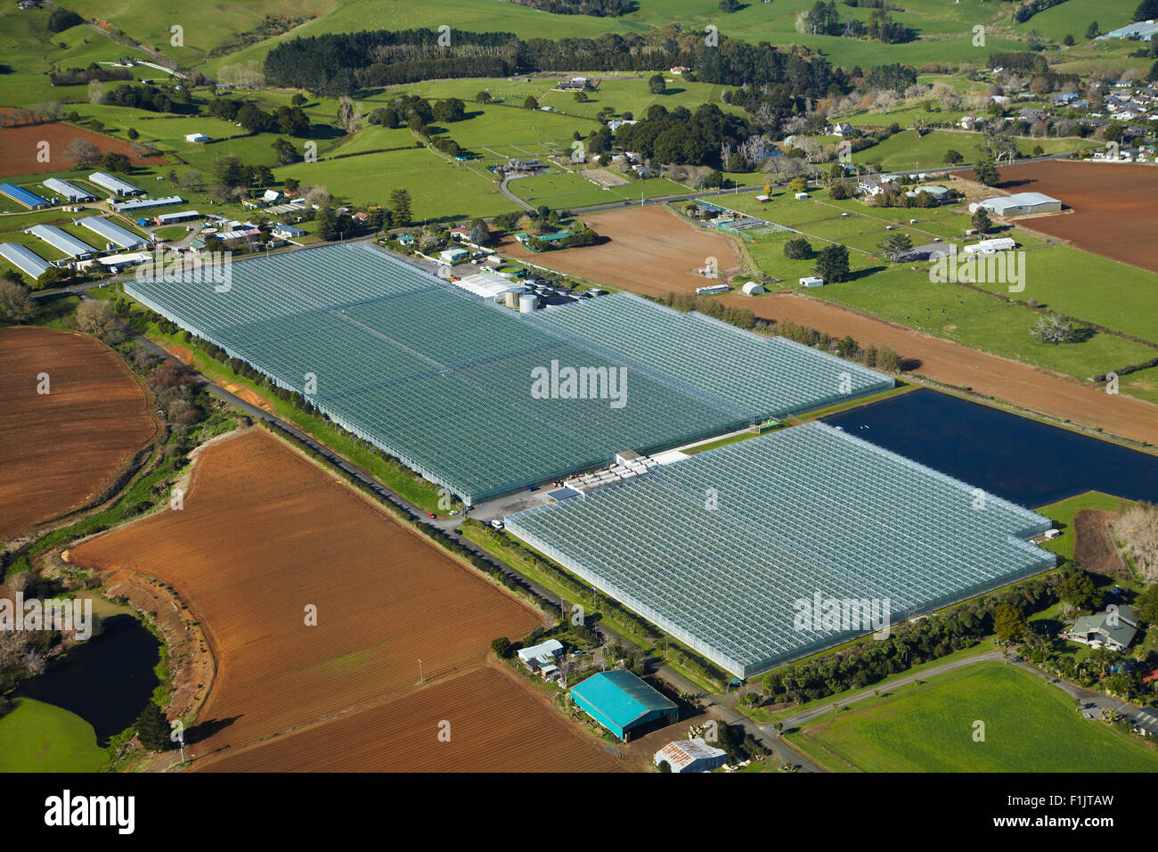 Status Produce glasshouses near Pukekohe, South Auckland, North Island, New Zealand - aerial - Stock Image