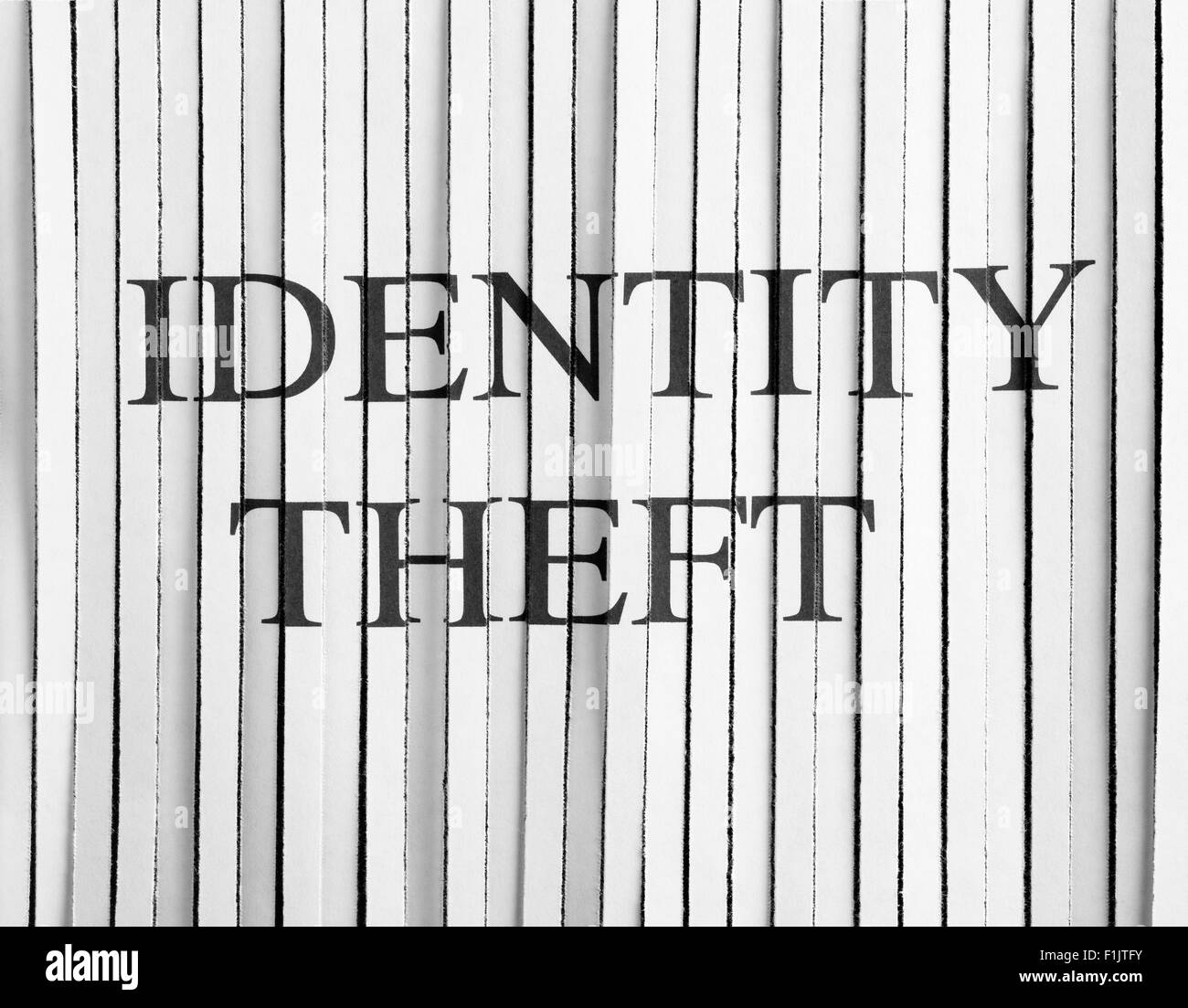 Shredded Paper with identity theft - Stock Image