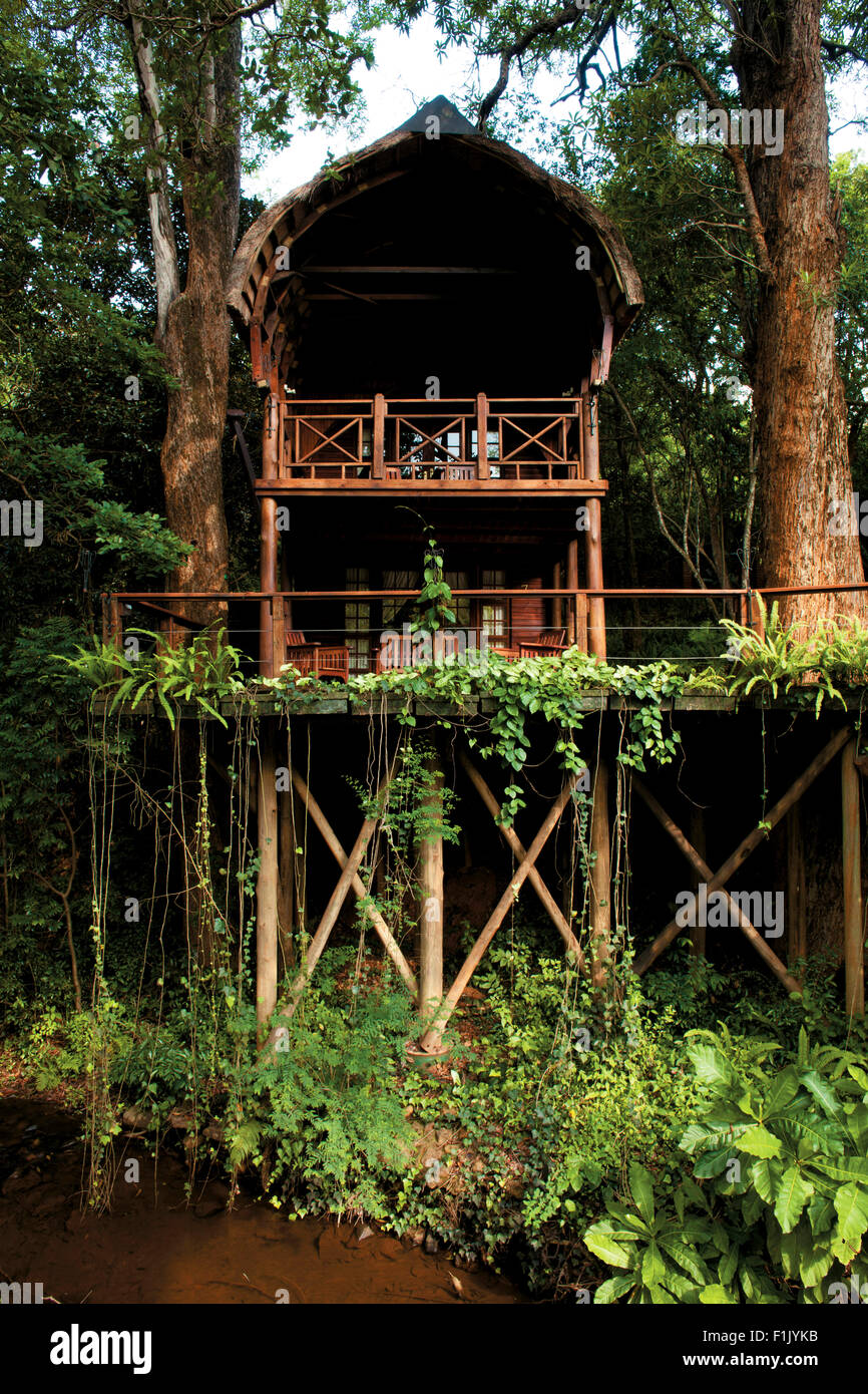 Serenity Forest Eco Lodge - Stock Image