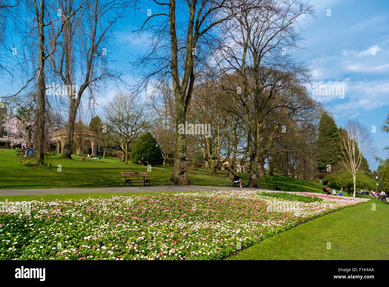 Spring flowerbeds in the Valley gardens, Harrogate Stock Photo