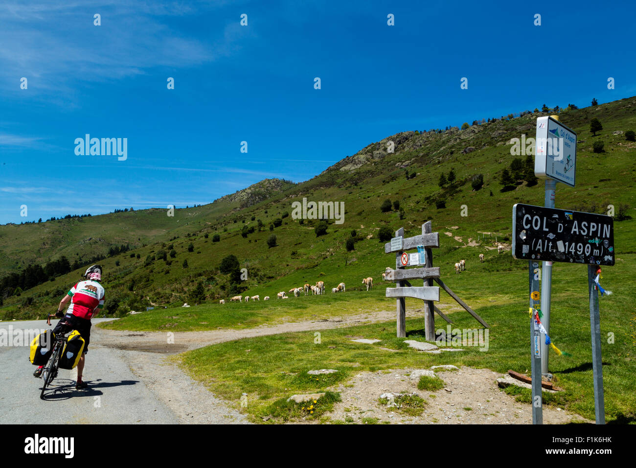 Col d Aspin, national park of Pyrenees, Hautes Pyrenees, France Stock Photo