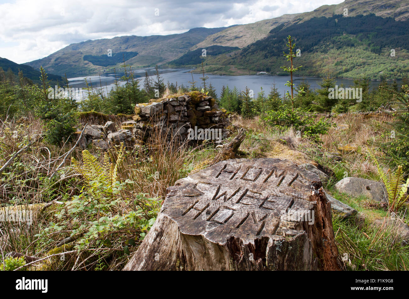 lake in distance and tree trunk with home sweet home engraved - Stock Image