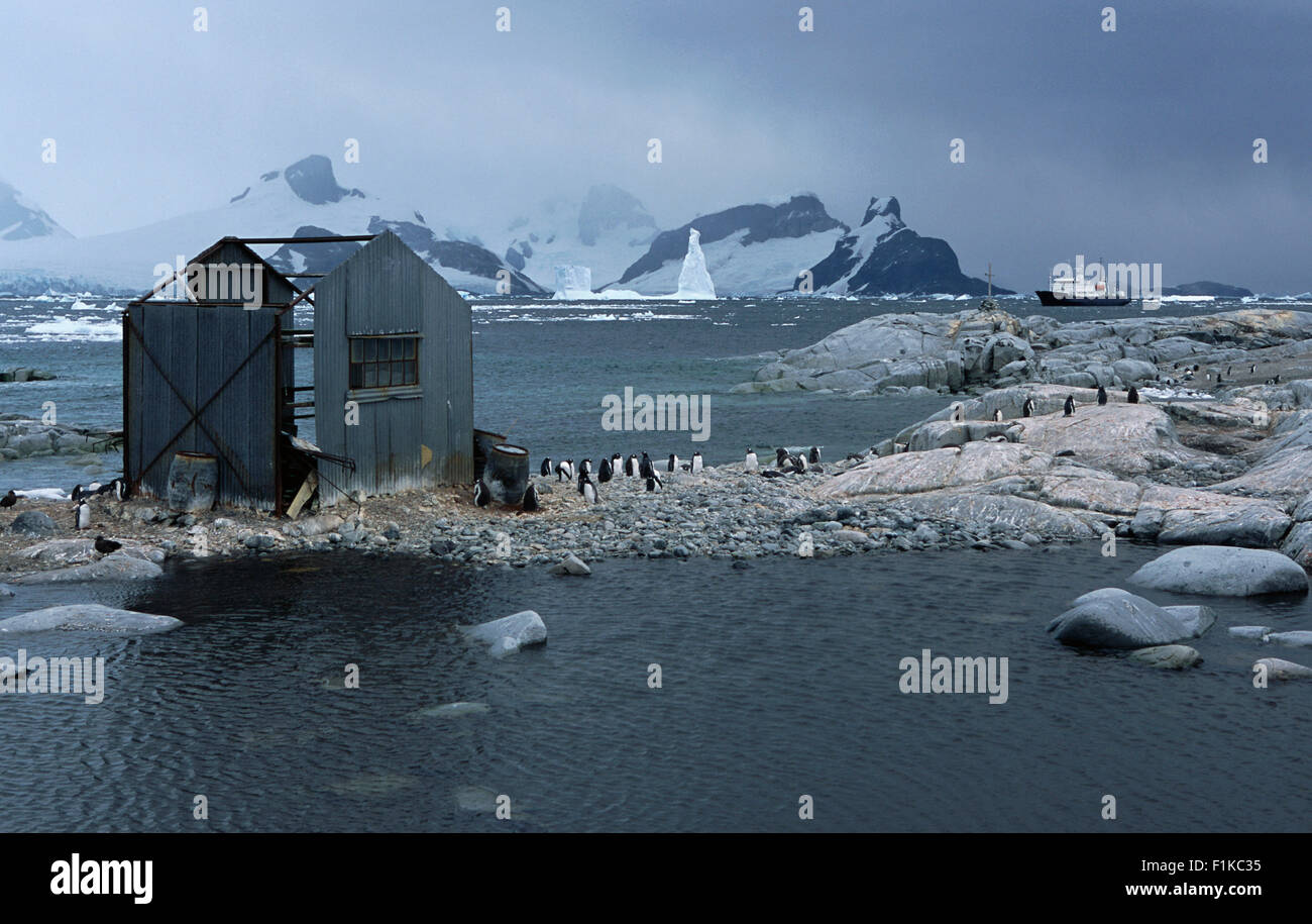 Old Whaling Station, South Georgia Island, Antarctica Stock Photo