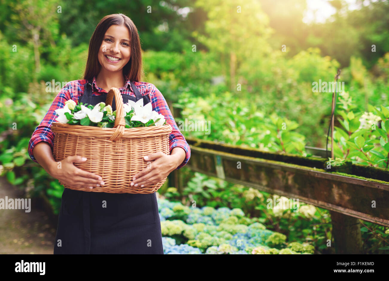 Young woman florist working outdoors at the nursery gathering flowers in a large wicker basket she is holding in - Stock Image