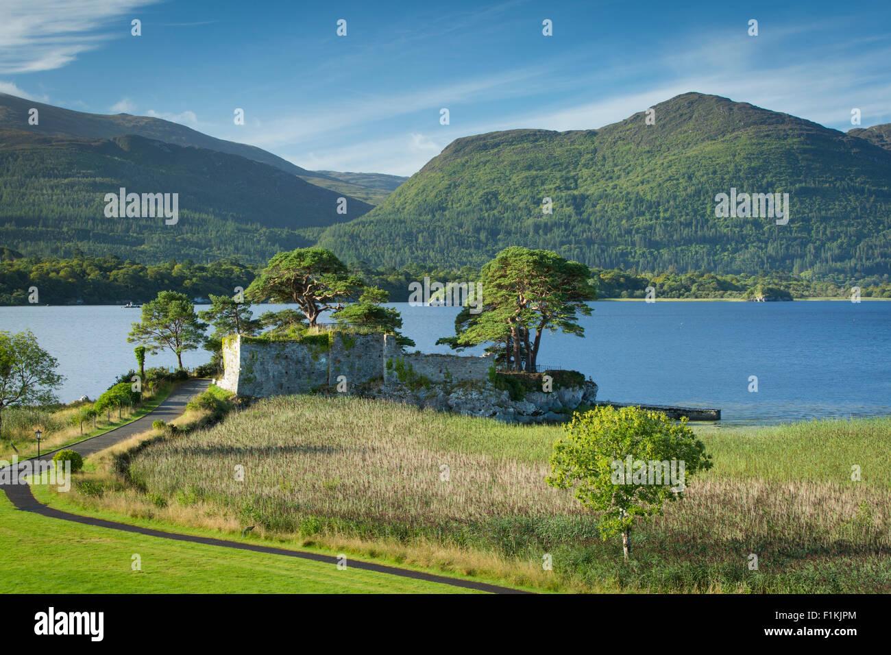 McCarthy Mor Castle (b. 12th Century), along Lough Leane near Killarney, County Kerry, Ireland - Stock Image