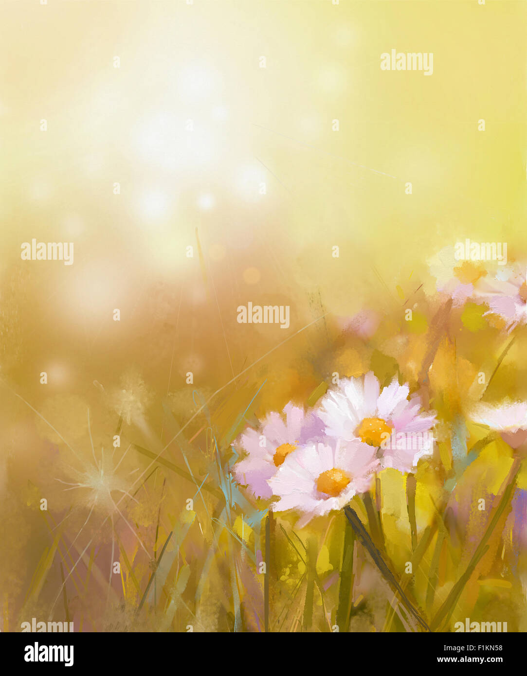 Oil painting white daisy-chamomile flowers field at sunrise.Spring Wildflower season, soft color and blur background - Stock Image