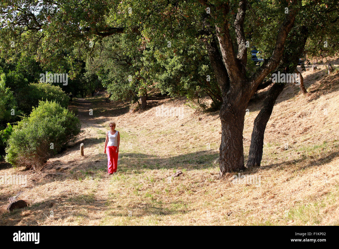 A female walking along a grass track in a french national park area in the south of france, Alpes-Maritimes, on Stock Photo