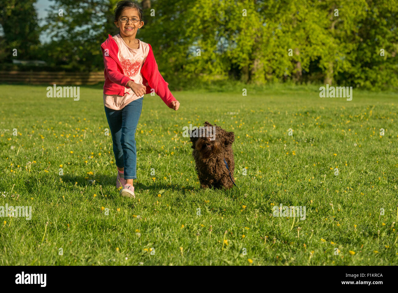 A young girl running with her Cockerpoo in a park. - Stock Image