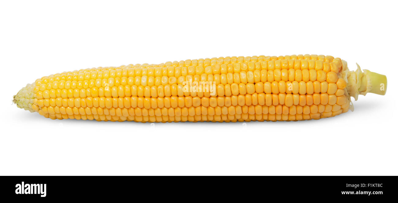 Purified ear of corn isolated on white background - Stock Image