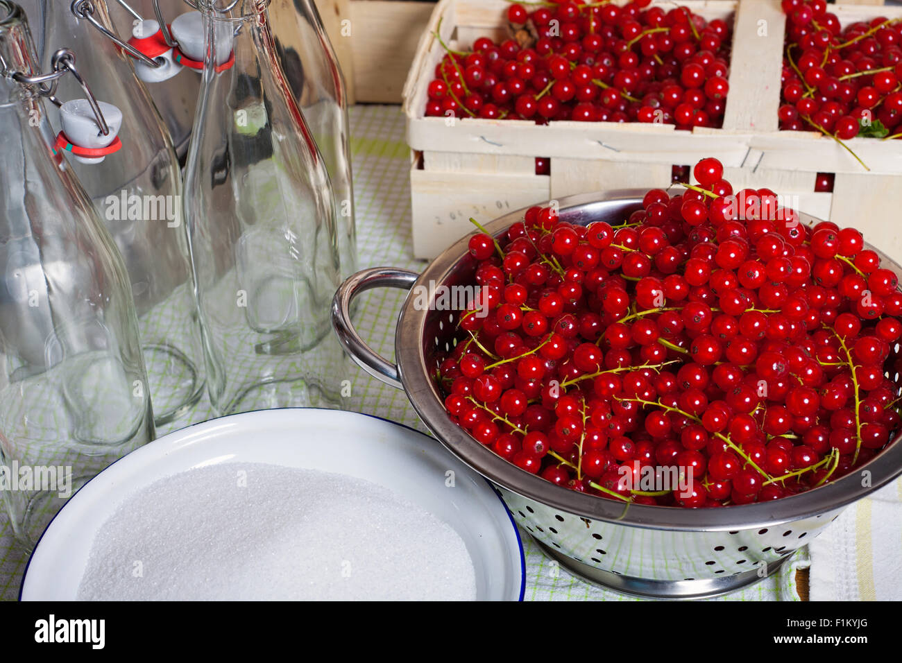 Red ripe currants in a colander, sugar in a bowl and Swing top bottles in the background - Stock Image