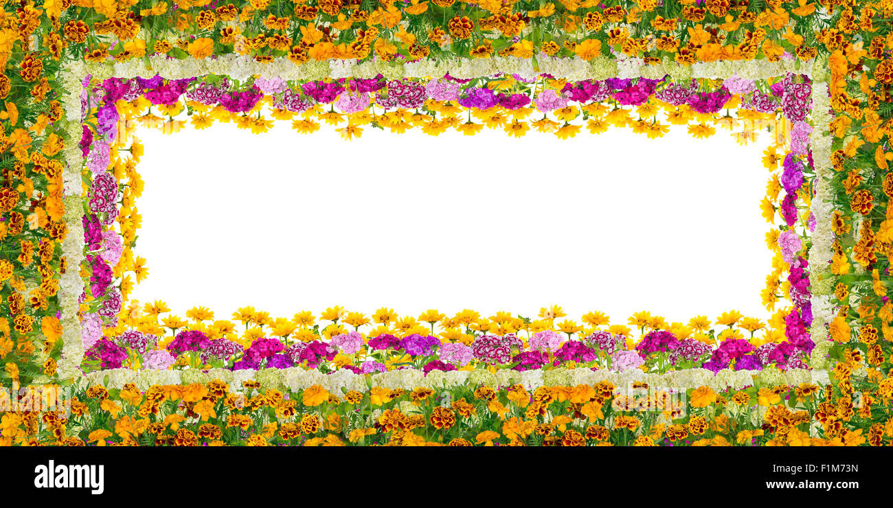 Magnificent Blooming Plants Frame For July Birthday Isolated Stock