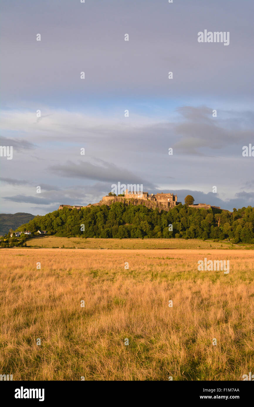 Stirling Castle in warm early evening light - Stock Image