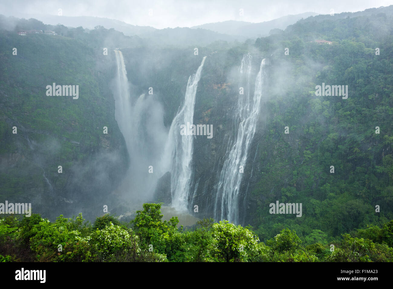 The beautiful and scenic Jog Falls created by the Sharavathi River on a foggy morning in monsoon season. - Stock Image