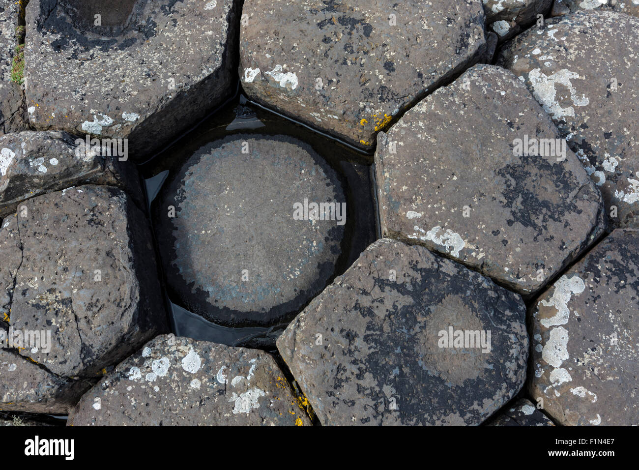 Eroded basalt columns at Giant's Causeway, County Antrim, Northern Ireland - Stock Image
