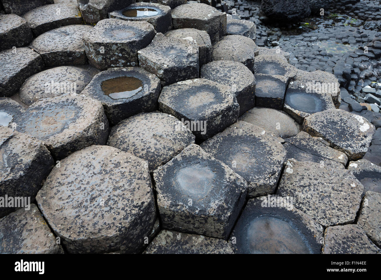 Tidal pool and basalt columns at Giant's Causeway, County Antrim, Northern Ireland - Stock Image