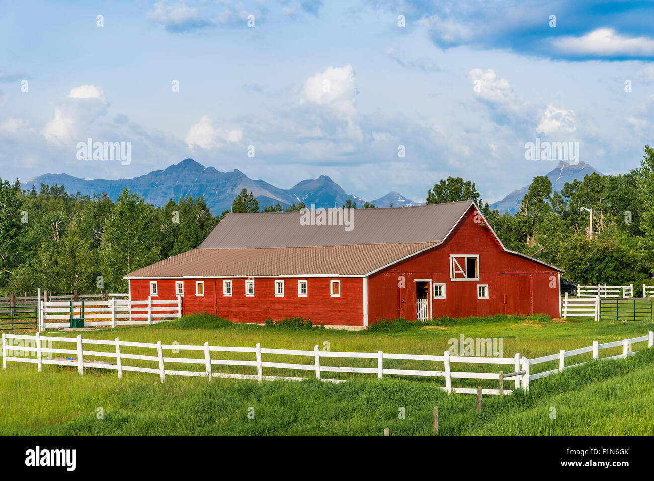 Barn near Pincher Creek, Alberta, Canada - Stock Image
