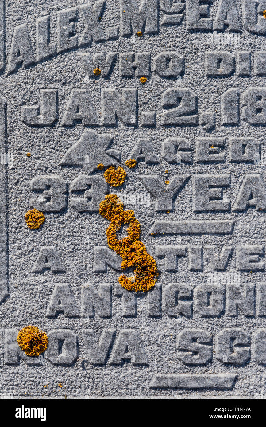 Detail grave site headstone with lichen,   Nicola Valley, British Columbia, Canada. - Stock Image