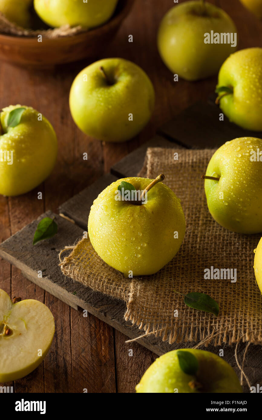 Raw Organic Golden Delicious Apples Ready to Eat - Stock Image