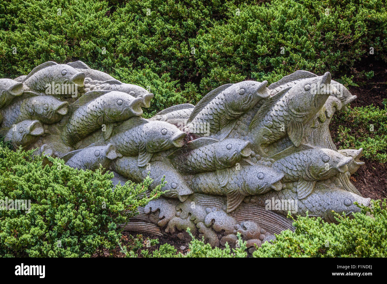 stone carving of a shoal of Koi's in waves at Singapore Botanic Gardens - Stock Image