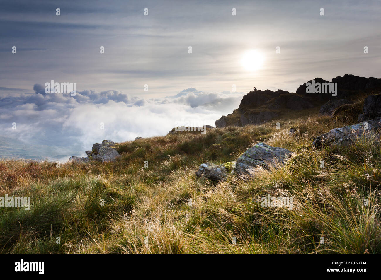 Harter Fell crags view across to the Scafells, English Lake District, cloud inversion, photographer, dew on grass - Stock Image