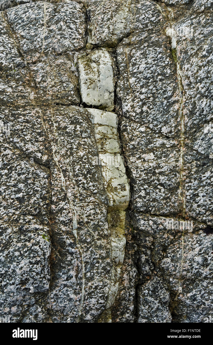Quartz intrusion in white granite rock - Stock Image