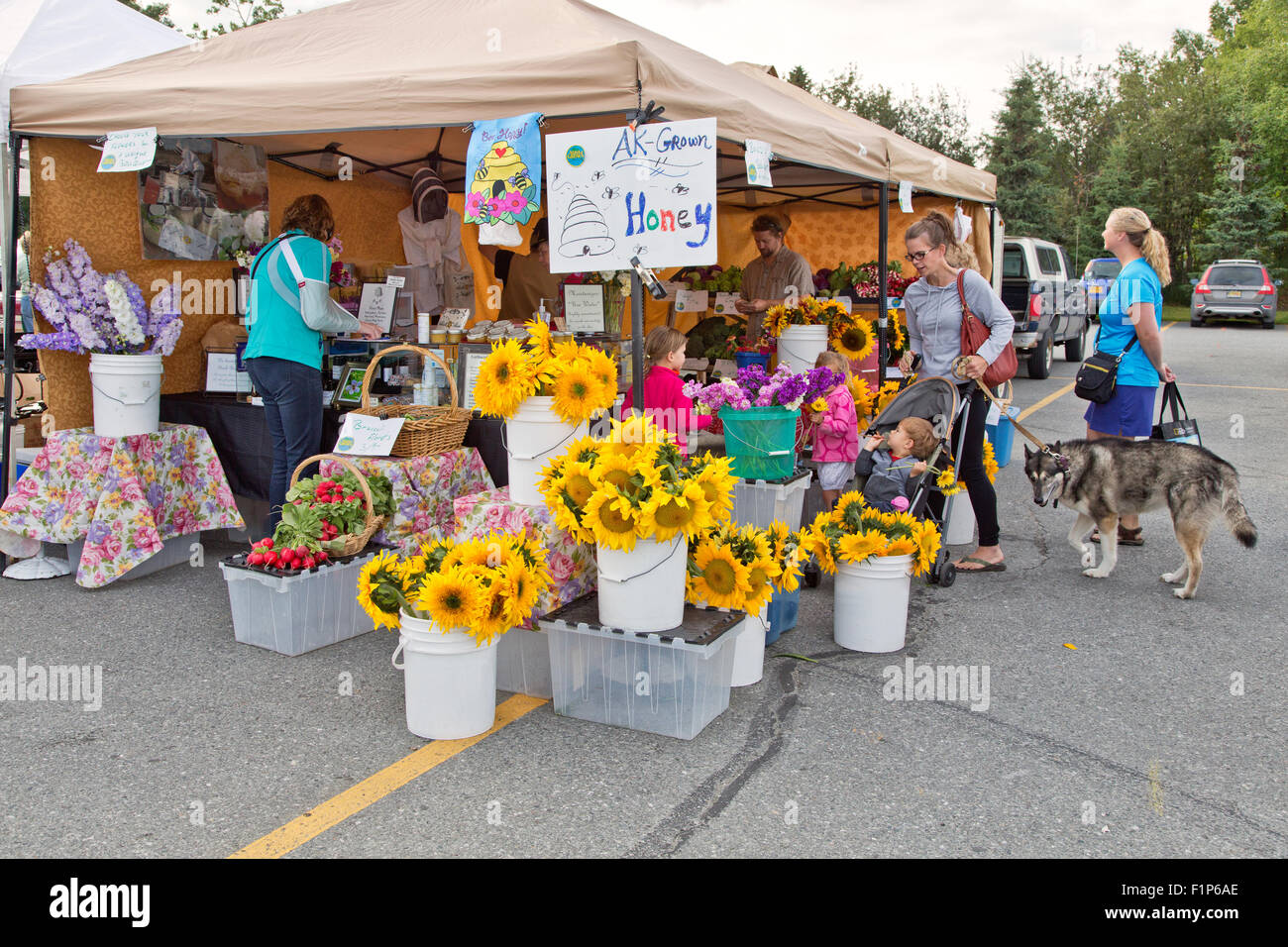 Earthworks at Farmers Market,  South Anchorage. - Stock Image
