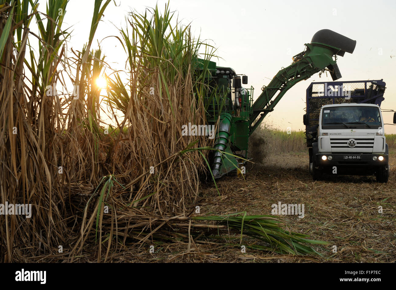 ANGOLA Malange , PAC Pòlo Agroindustrial de Capanda, Biocom Project, joint venture of Brazil company Odebrecht - Stock Image