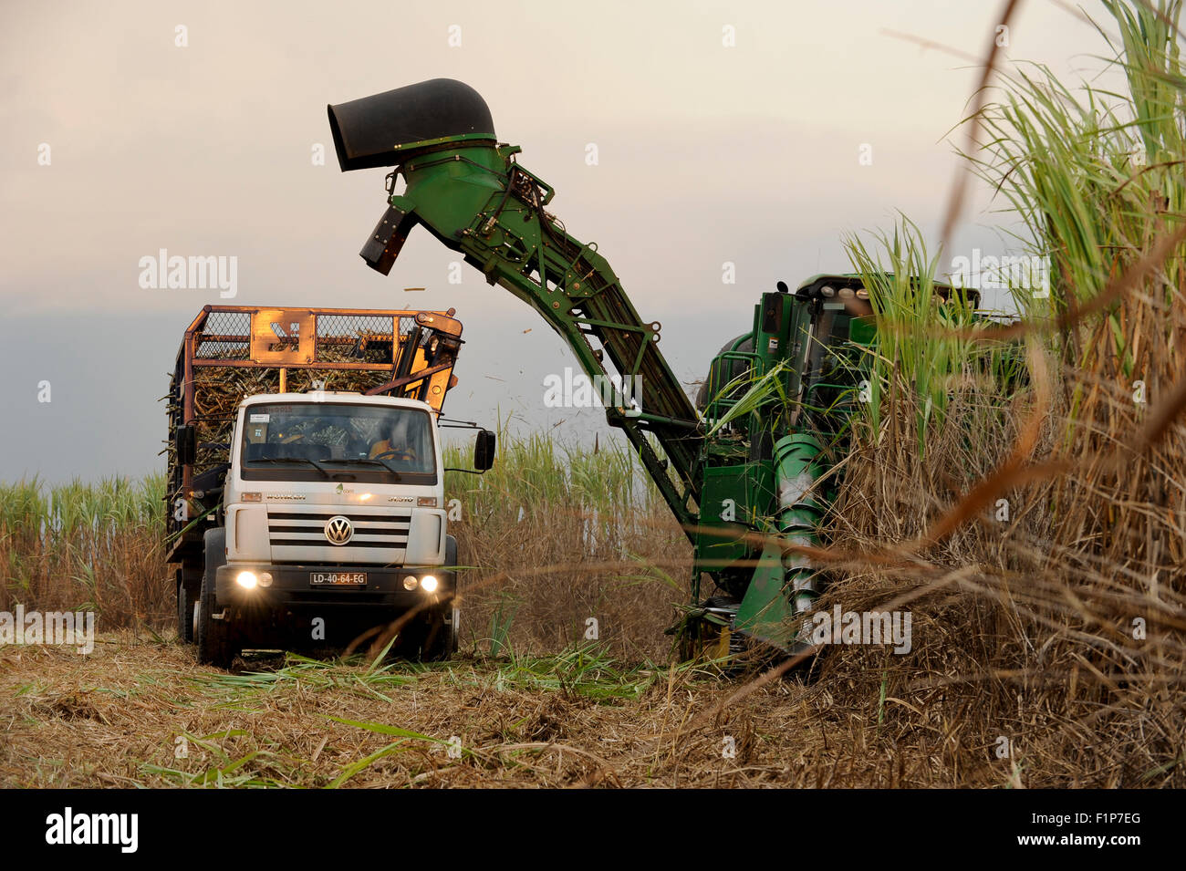 ANGOLA Malange , PAC Pòlo Agroindustrial de Capanda, Biocom Project, joint venture of Brazil company Odebrecht and Stock Photo