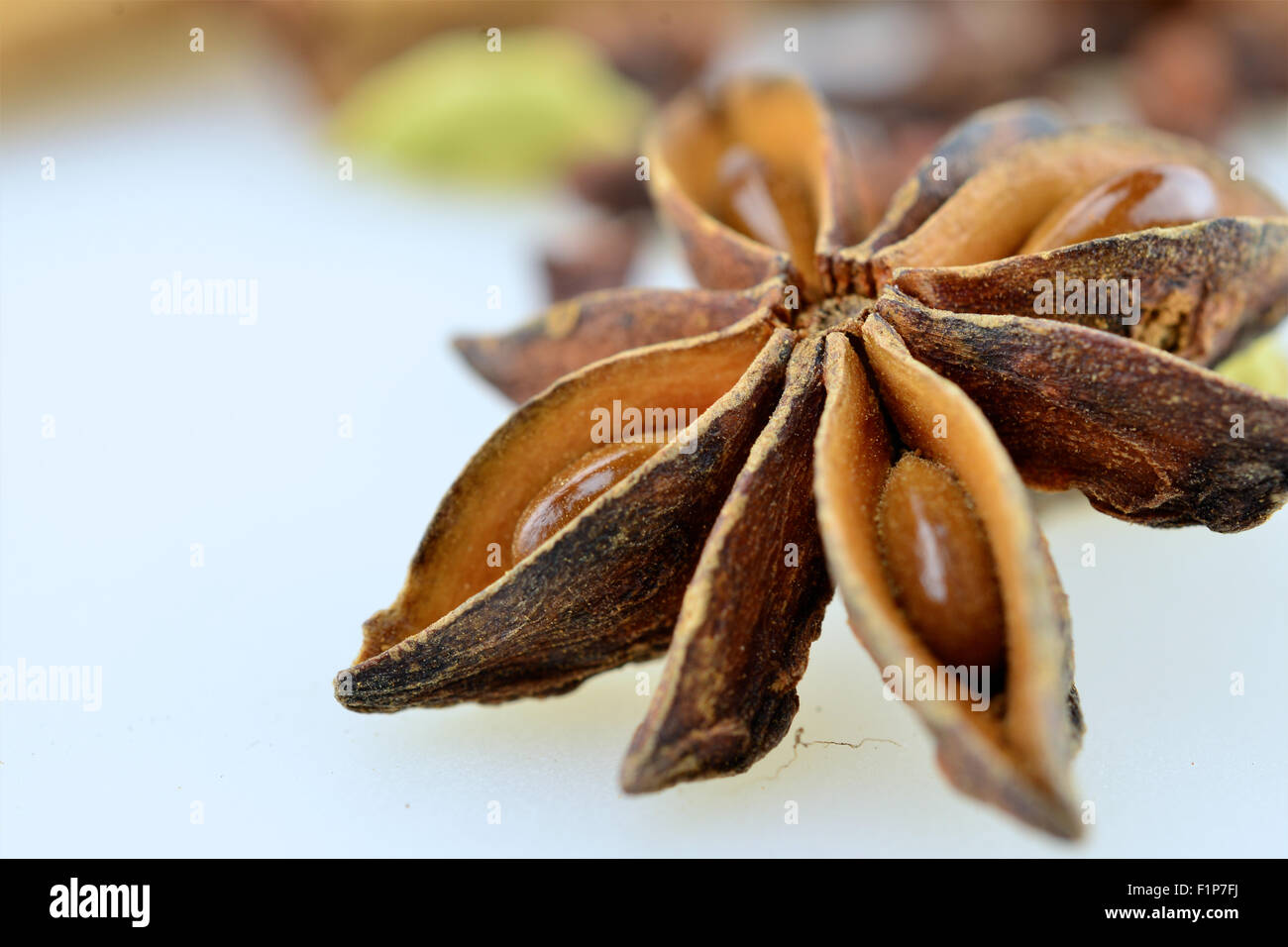 Brown anise star, seed on white background - Stock Image