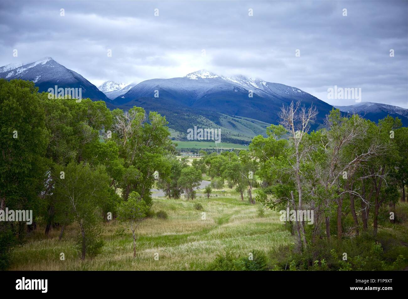 Livingston Montana Landscape. Early Summer - Snowy Peaks. Montana Photo Collection - Stock Image