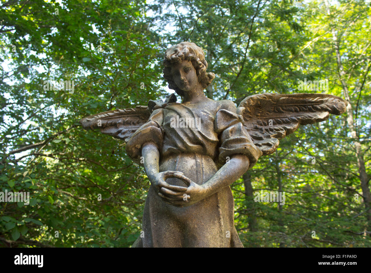 Angel statue in a forest. - Stock Image