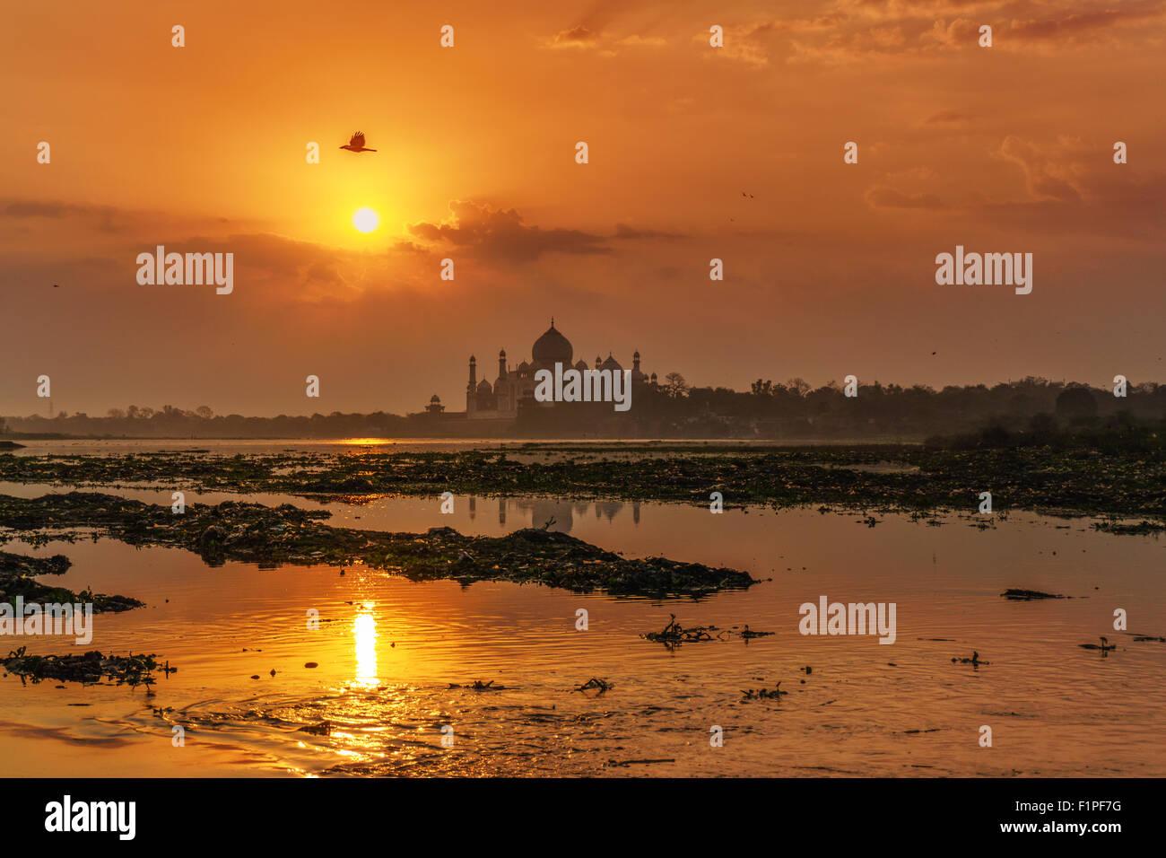 A sunrise view of Taj Mahal in Agra, India. - Stock Image
