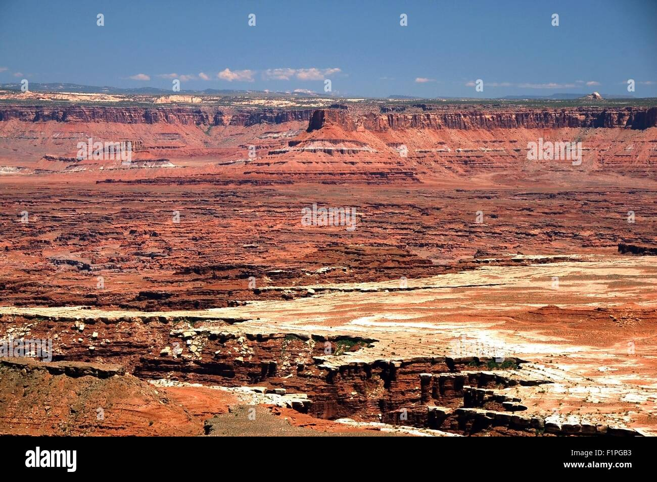 Canyonlands Landscape. Canyonland National Park in the Utah State. USA. Panoramic Photo. - Stock Image