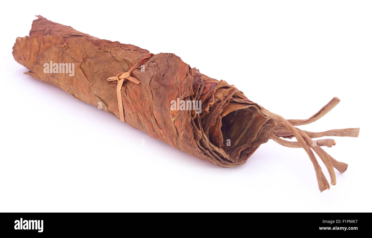 Dry tobacco leaves over white background - Stock Image