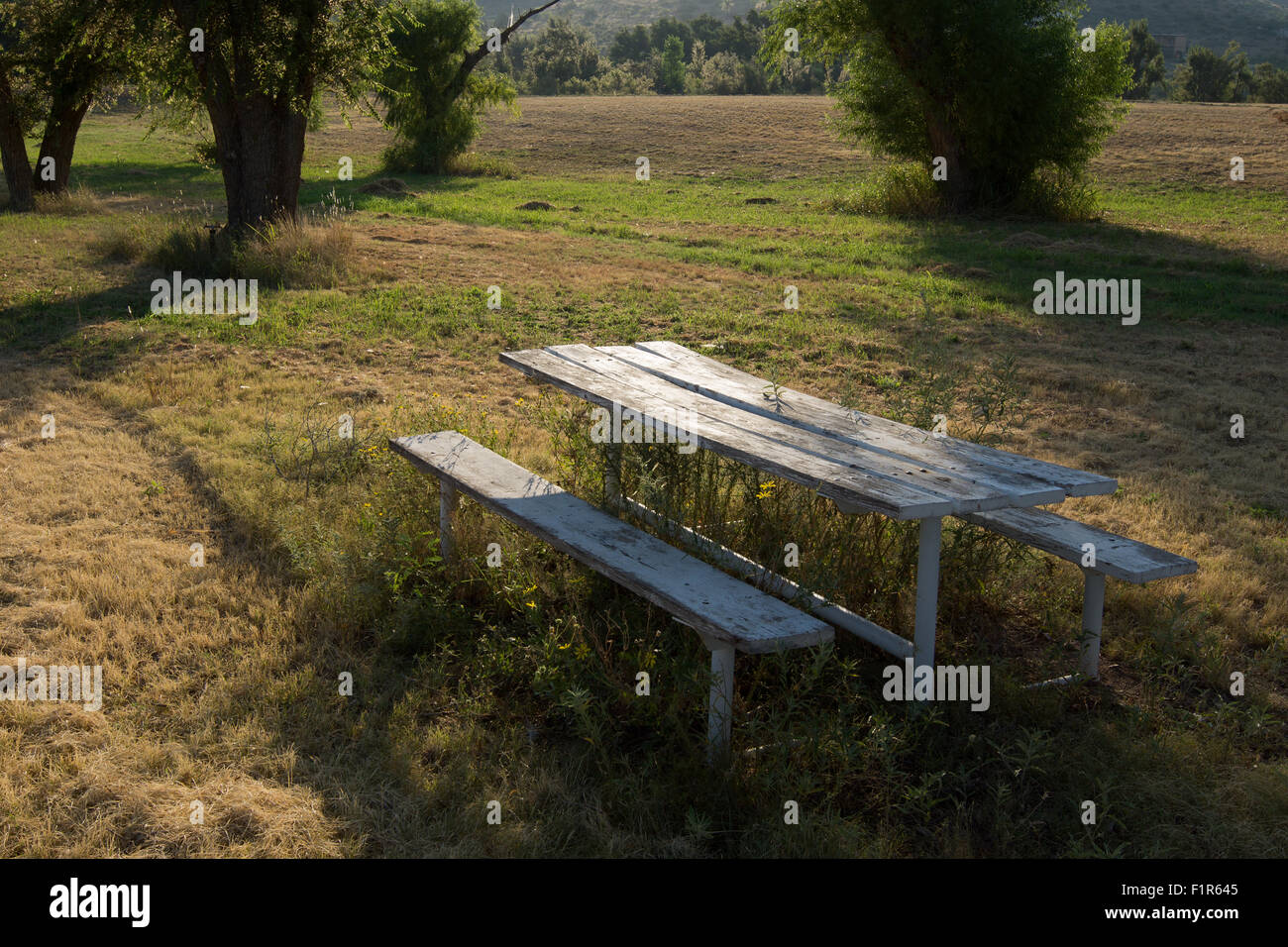 Neglected bench in a public park the city of Alpine, West Texas - Stock Image